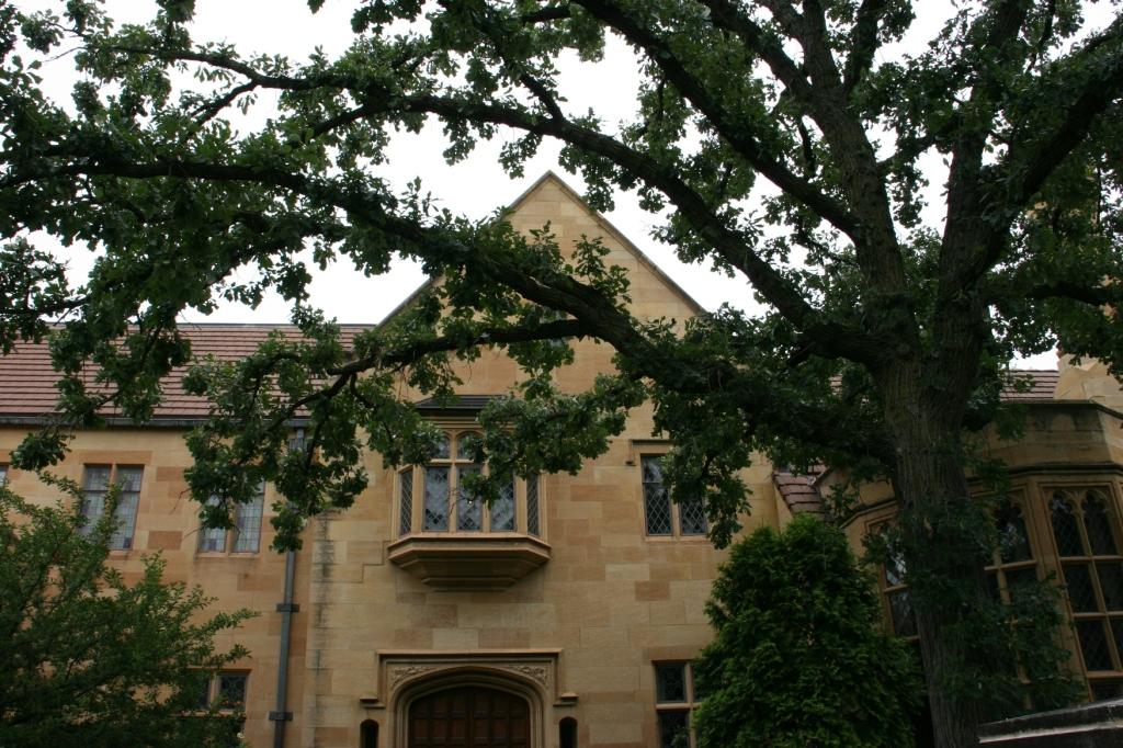 A majestic native oak graces the front yard.