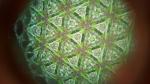 paine-gardens-kaleidoscope-3-copy