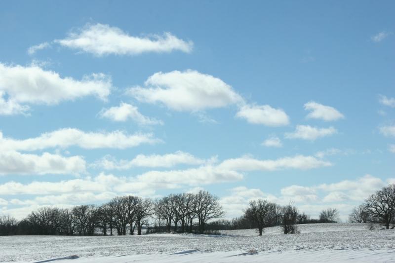 winter-landscape-10-trees