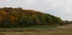 Autumn se Minnesota, #44 Roberds Lake areatrees