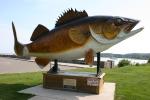 Mille Lacs Lake, #51 wholewalleye