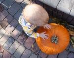 Pumpkin Patch, #161 Izzy's hands onpumpkin
