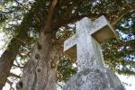 St. Jarlath Cemetery, #341 stone crossclose-up