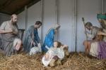 Nativity scene, #33 shepherdsplus