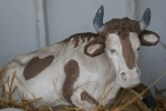 Nativity scene, #39 cow upclose