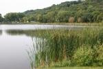 Poetry, #34 lake & surroundingarea