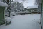 Snow, #5 backyard