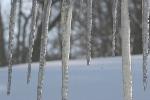 Snowy Faribault, #135icicles