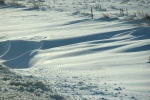 Snowy scenes in MN, #35 sculpted snow1