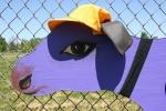 Cowtastic, close-up purple cow#60