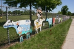 Cowtastic, group of curving along fence#108