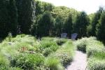 Botanical gardens, #163 garden with lawnchairs