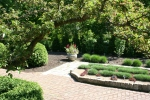 Botanical gardens, #165 tree framedbeds