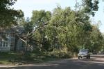 Damage along Fourth Ave SW, #17 tree &house