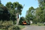 Damage along Fourth Ave SW, #6 treetruck