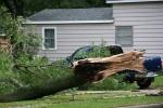 Faribault storm, #2 broken tree by bluepick-up