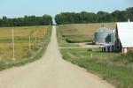 Backroads, #186 farm buildingsite
