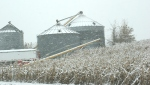 Snow, #231 grain bins –Copy