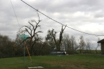 Storm damage, #78 twistedtrees
