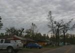 Tornado damage, #45 along Roberds Lake Boulevard ruralFaribault