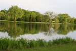 Spring in Faribault, #14 Cannon River looking toward S. Alexander Park