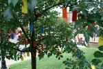 Gratitude tree, #23 sculpture throughtree
