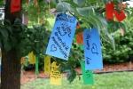 Gratitude tree, #40 multiple tags ontree