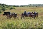 Country social, #87 horse-drawn wagonride