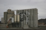 Ardent Mills silos mural project,#4965