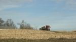 SW MN, #4803 grain truck on hill near RedwoodFalls