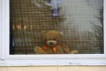 Teddy bear in window close-up, #6739 Faribault MN