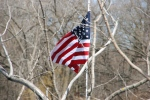 Minnesota outdoors, #6952 American flag by lake