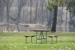 Signs of spring in MN, #6822 picnictable