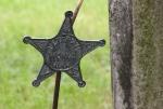 Cannon City Cemetery, #7824 WW vet'sstar