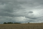 Country drive, #7263 cloudysky