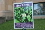 Garden, #9797 bee lawnsign