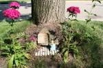 Mini garden art, #9008 rabbit byphlox