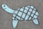 Chalk art, #508turtle
