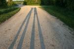 Nature, #131 shadows