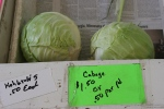 Vegetable stand, #74cabbage