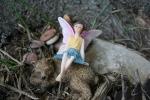 Atwood, #1050 fairy &bear