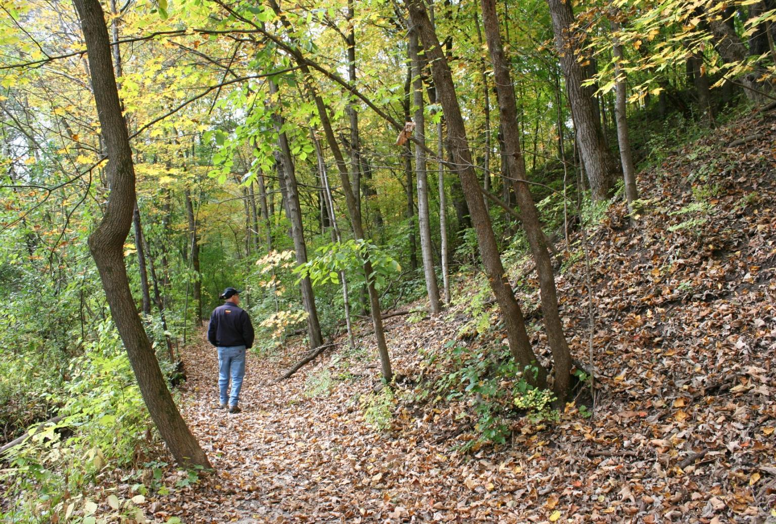 More than a fall hike at Falls Creek Park